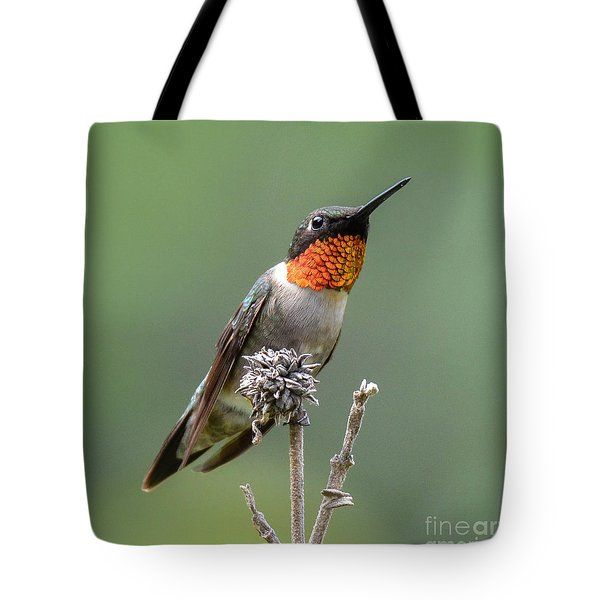 The Perfect Lookout Tote Bag by Amy Porter