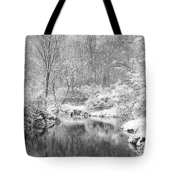 Tote Bag featuring the photograph A Perfect Storm by Kendall McKernon