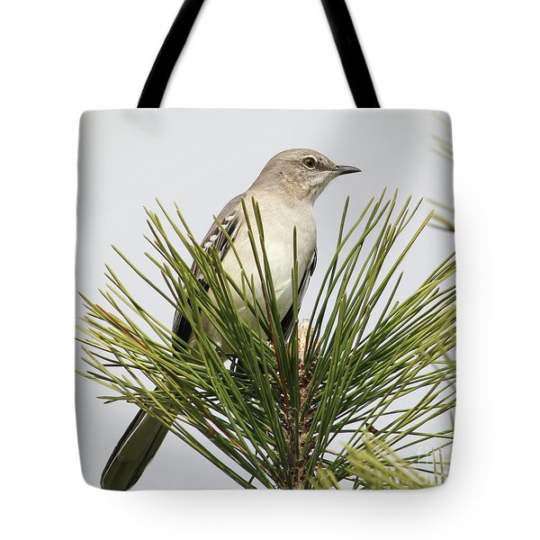The Perfect View Tote Bag by Anita Oakley