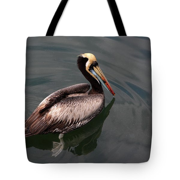Tote Bag featuring the photograph The Peruvian Pelican #2 by Aidan Moran