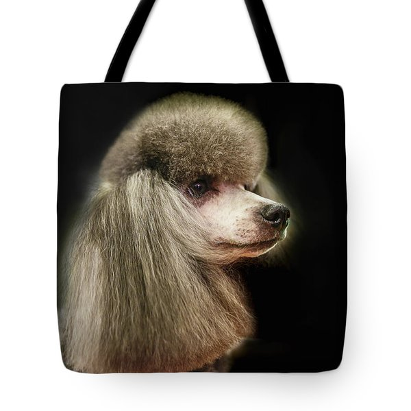The Poodle Is A Breed Of Dog, One Of The Most Common Breeds In The Present. Tote Bag
