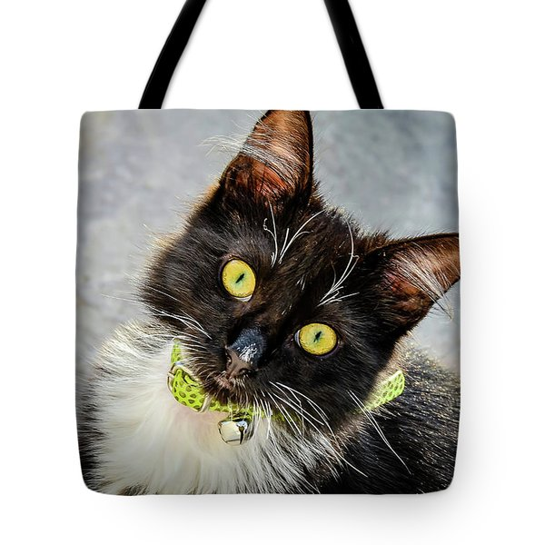 The Portrait Of A Cat Tote Bag