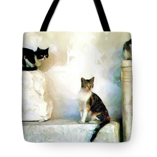 The Pose - Rdw250812 Tote Bag
