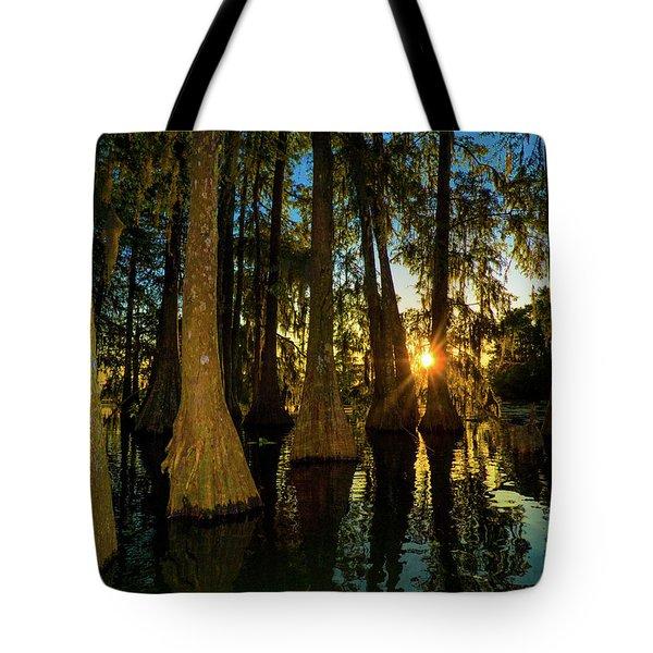 The Pow Wa Of The Light Tote Bag