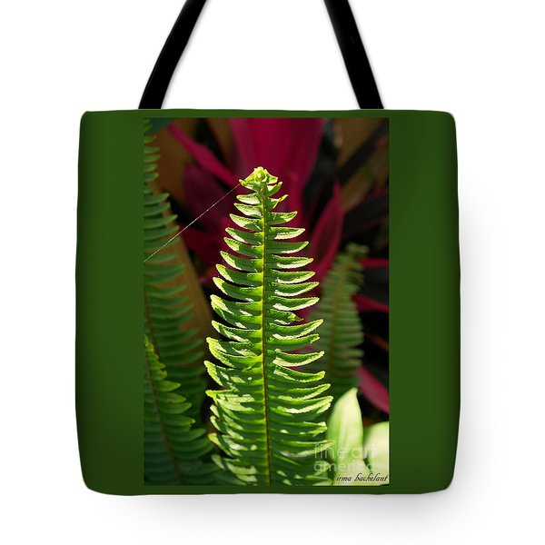The Power Of One Tote Bag by Irma BACKELANT GALLERIES