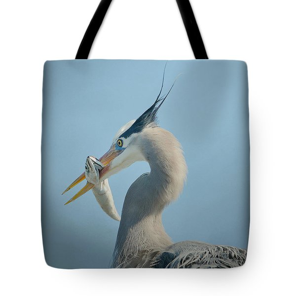 The Prize 5 Tote Bag by Fraida Gutovich
