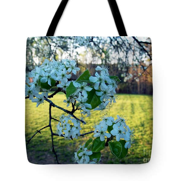 The Promise Of Spring 1c Tote Bag