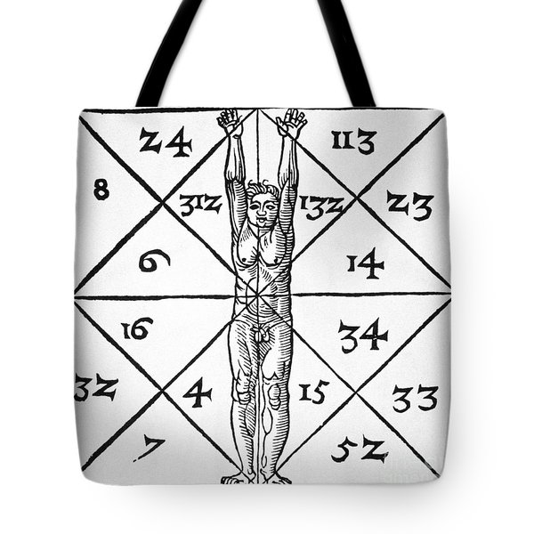 The Proportions Of Man And Their Occult Numbers From De Occulta Philosophia Libri IIi Tote Bag