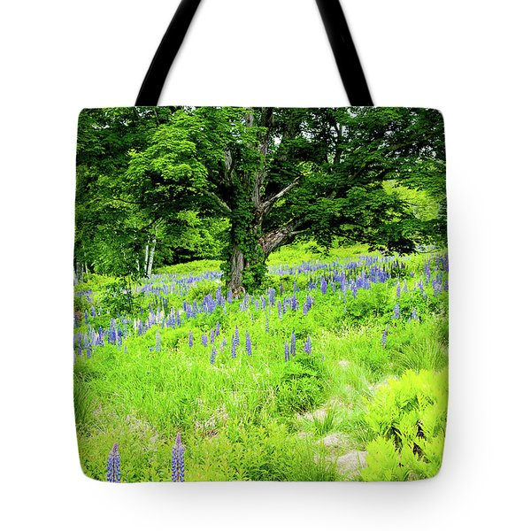 Tote Bag featuring the photograph The Protector by Greg Fortier