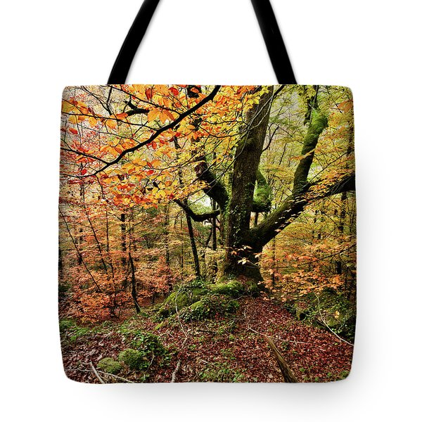The Protector Tote Bag by Jorge Maia