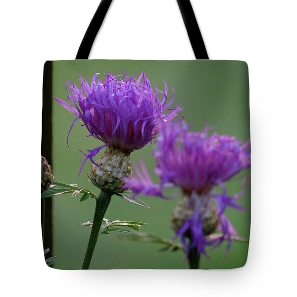 The Purple Bloom Tote Bag