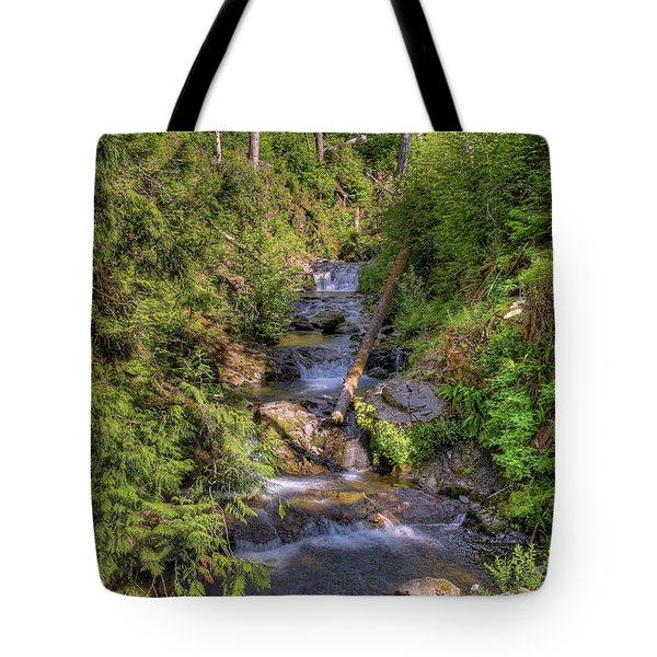 The Quinault Stream 2 Tote Bag