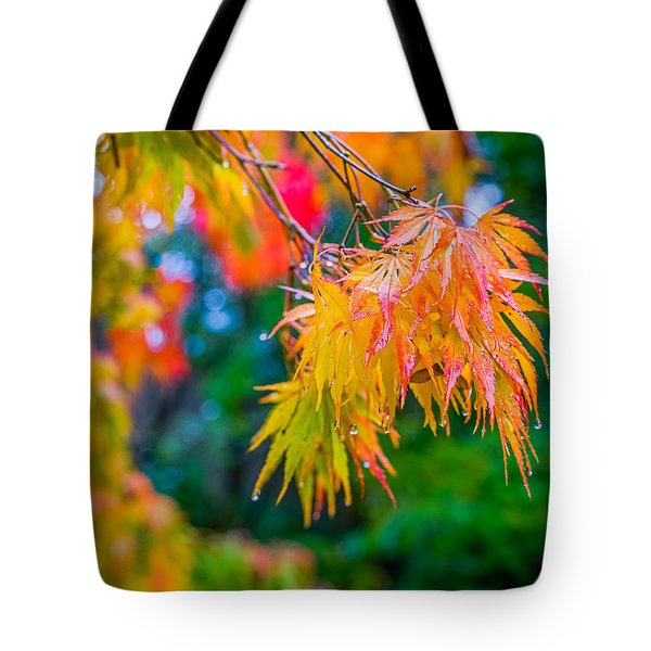 The Rainy Bunch Tote Bag by Ken Stanback