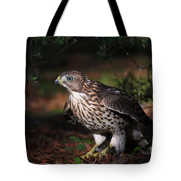 The Raptor Tote Bag by Mircea Costina Photography