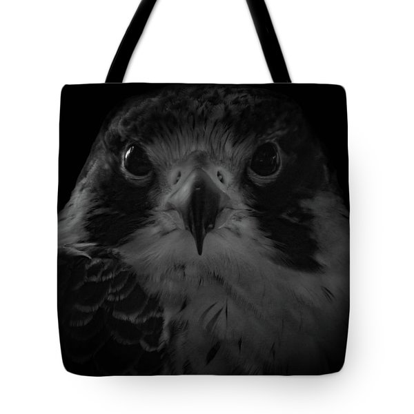 The Raptors, No. 10 Tote Bag