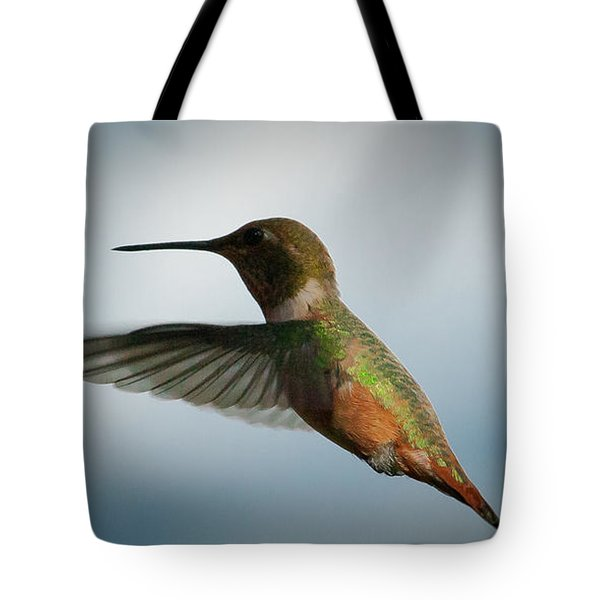 The Rare Green Backed Male Rufous Hummingbird Tote Bag