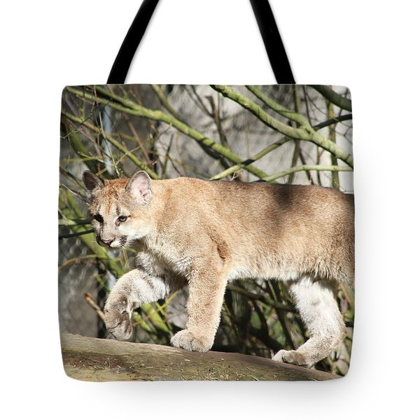 Tote Bag featuring the photograph The Red Carpet by Laddie Halupa