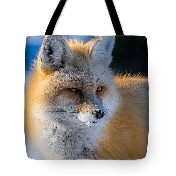 Tote Bag featuring the photograph The Red Fox Portrait In Snow by Yeates Photography