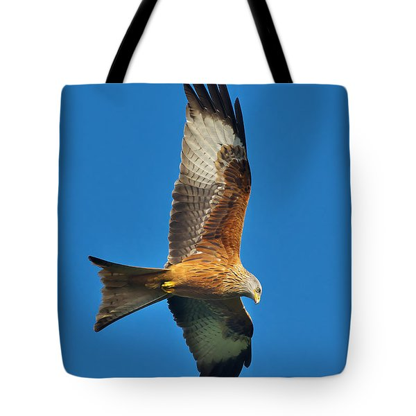 The Red Kite - Milvus Milvus Tote Bag