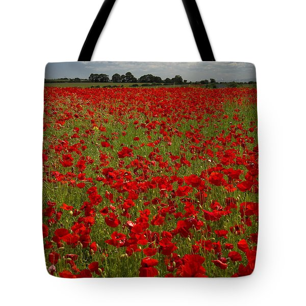 The Red Poppy Field Tote Bag