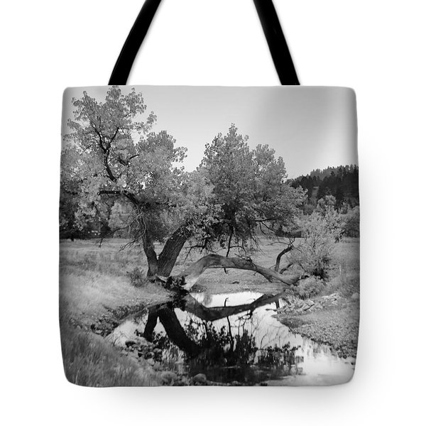 Eye Of The Stream Tote Bag