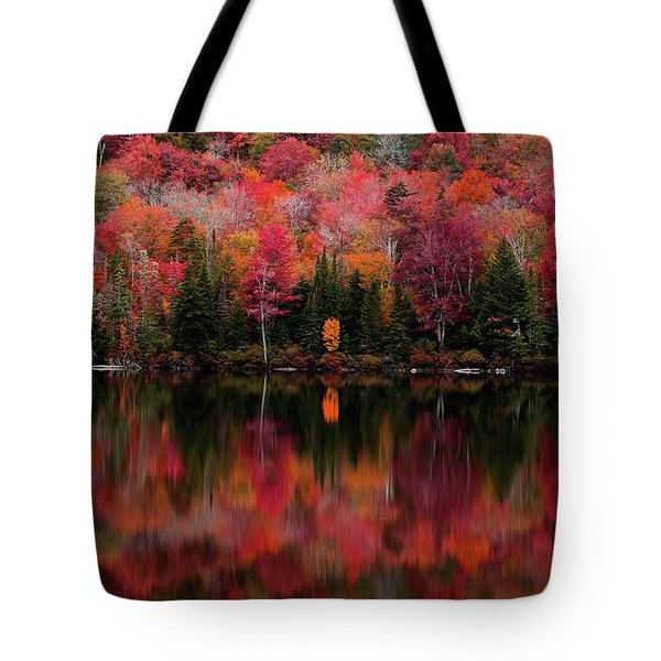 The Reflection Tote Bag