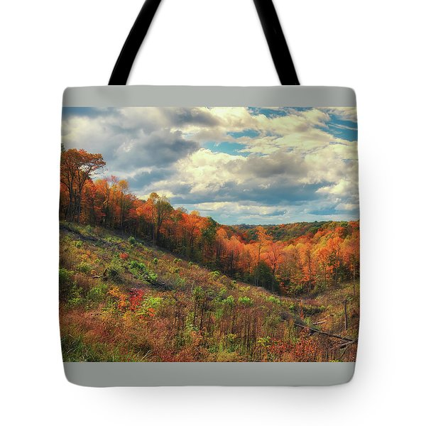 The Ridges Of Southern Ohio In Fall Tote Bag