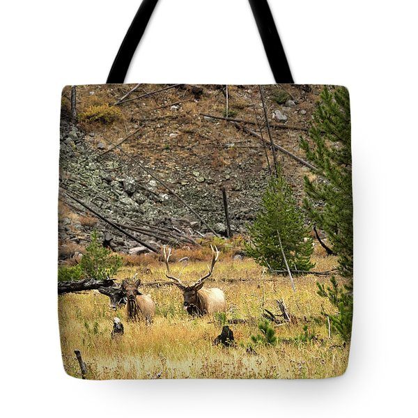 The Right Breeze Tote Bag