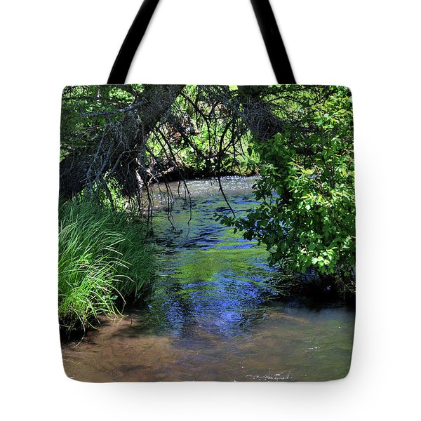 Tote Bag featuring the photograph The Rio Chiquito by Ron Cline