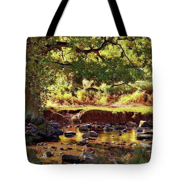 The River Lin , Bradgate Park Tote Bag by John Edwards