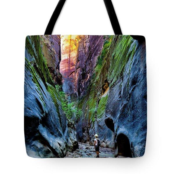 The Riverbend Tote Bag