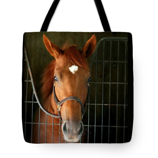 The Roan Tote Bag by Cathy Harper