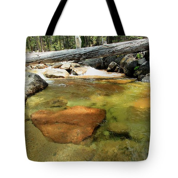 Tote Bag featuring the photograph The Road Less Travelled  Portrait by Sean Sarsfield
