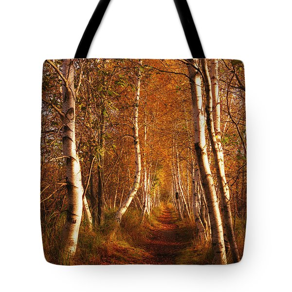 Tote Bag featuring the photograph The Road Not Taken by Joe Paul
