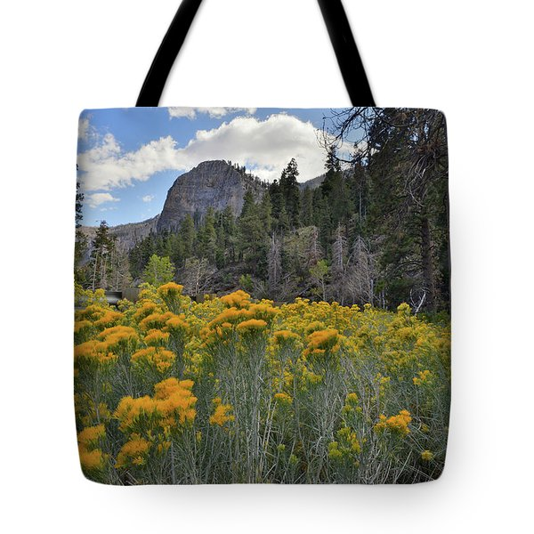 The Road To Mt. Charleston Natural Area Tote Bag