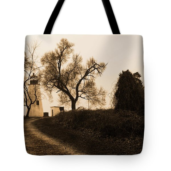 Tote Bag featuring the photograph The Road To Turkey Point Lighthouse by Dennis Dame