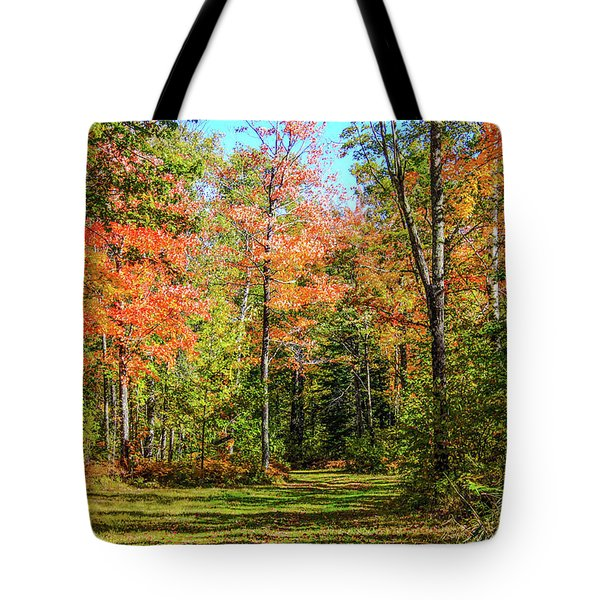 The Road Updated Tote Bag
