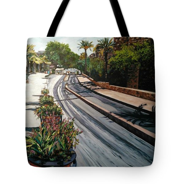 The Roman Wall Tote Bag