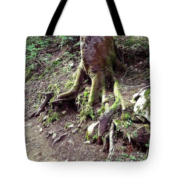 The Root Of The Matter Tote Bag
