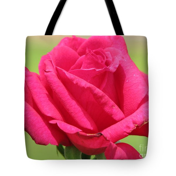 The Rose Tote Bag by Amanda Barcon