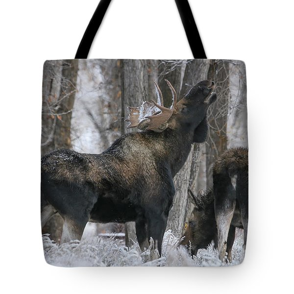 The Rut Tote Bag by Gary Hall