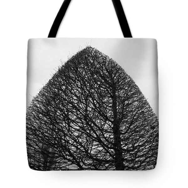 The Sculpted Life 1 Tote Bag by Colleen Williams