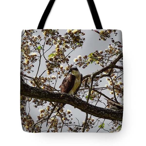 The Sea Eagle Tote Bag
