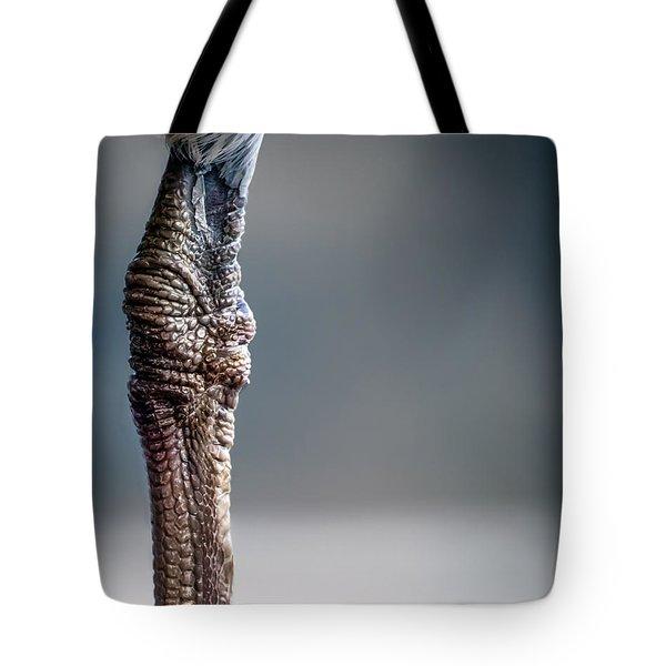 The Seagulls Knee  Tote Bag by Bob Orsillo