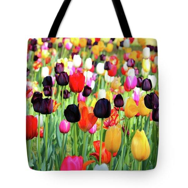 The Season Of Tulips Tote Bag