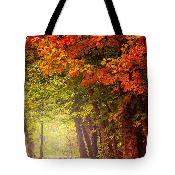 The Secret Place Tote Bag by Rima Biswas