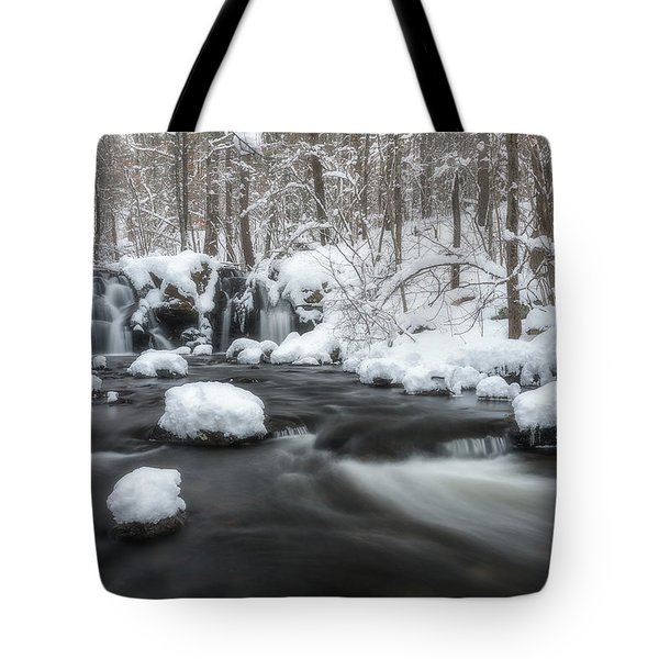 The Secret Waterfall In Winter 2 Tote Bag