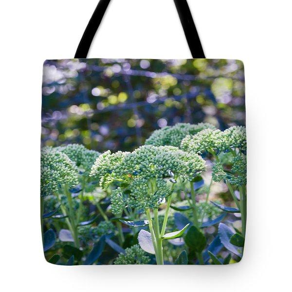 The Sedum Forest Tote Bag
