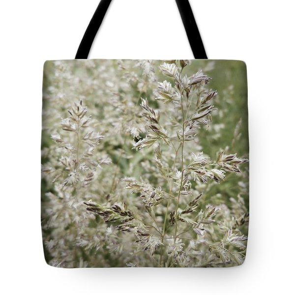 The Seedy Side Tote Bag by Tim Good