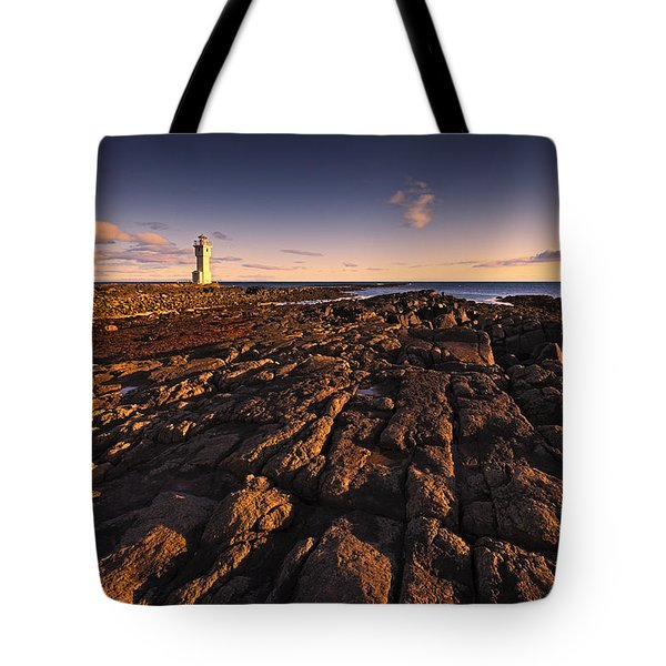 The Sentinel Tote Bag by Dominique Dubied